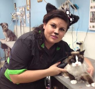 photo, smiling employee grooming a cat